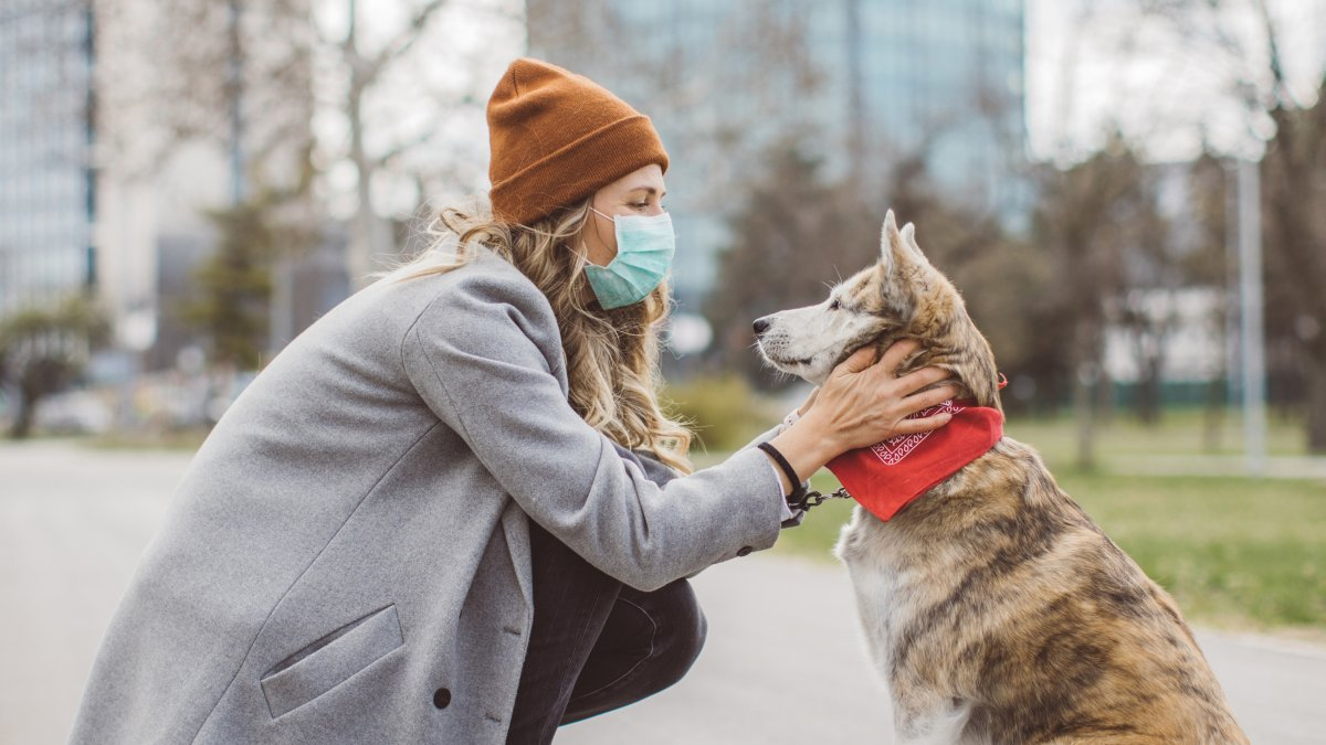 Woman wearing a PPE mask bent down petting her dog