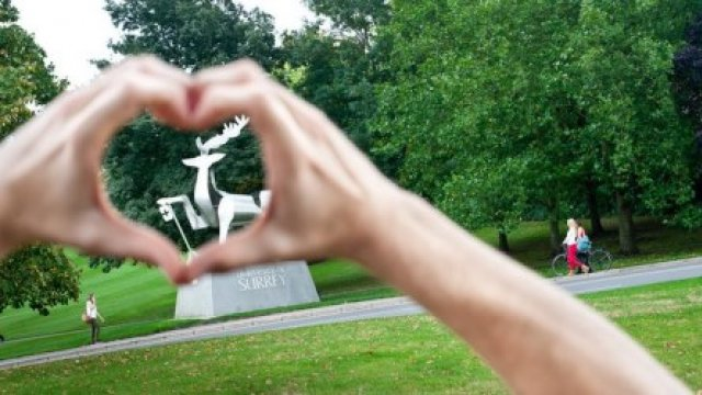 Picture of stag statue through hands in a heart shape