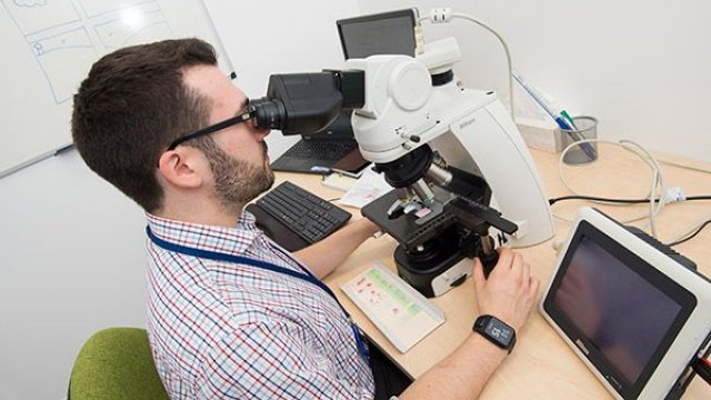 A man in a checked shirt looking into a microscope