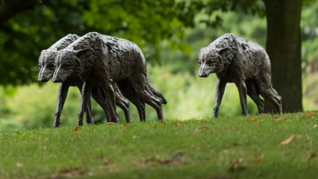 Statues of wolves