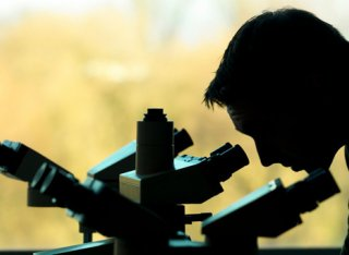 Person using microscope