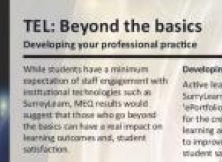 TEL: Beyond the basics: Developing your professional practice