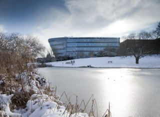 The lake at the University of Surrey frozen over during Winter.