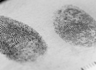 Fingerprint markings and measurements