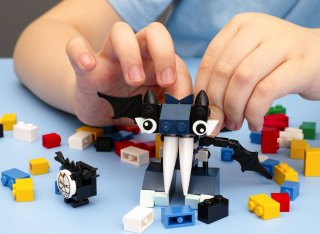 A child is playing with Lego bricks.