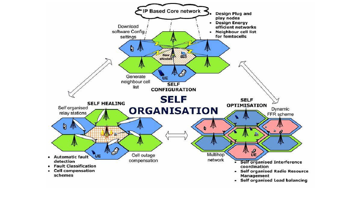 Self organisation graph