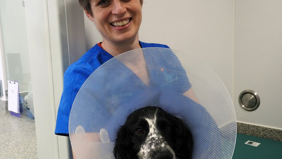 Clare Rusbridge with dog wearing an Elizabethan collar