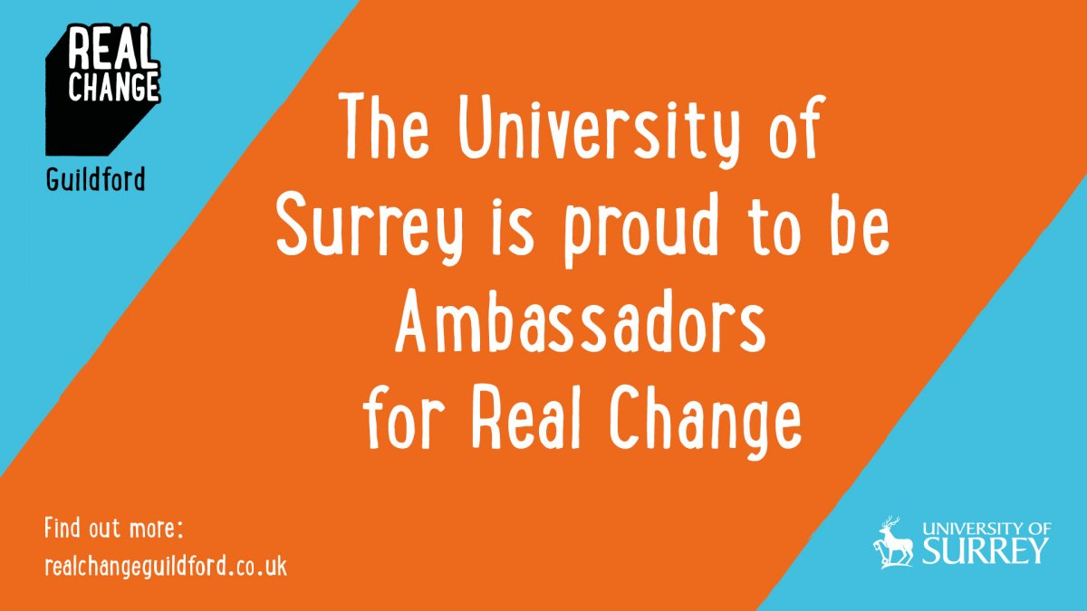 Ambassador Real Change