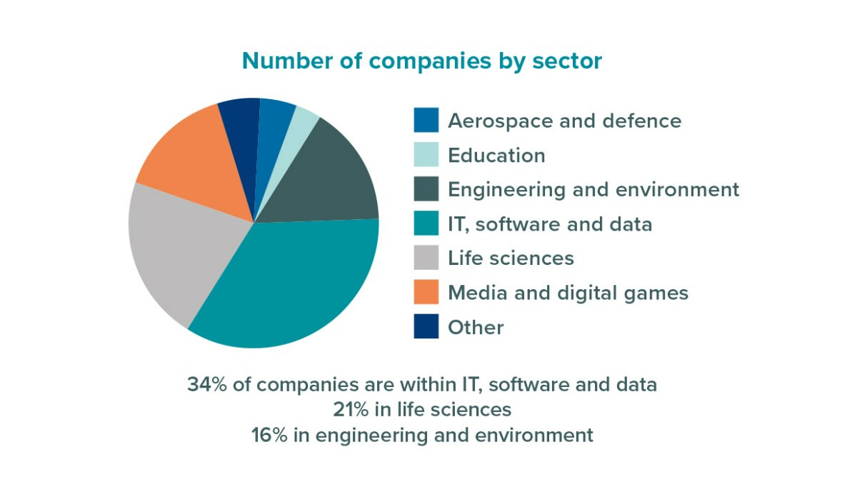 Number of companies at Surrey Research Park by sector