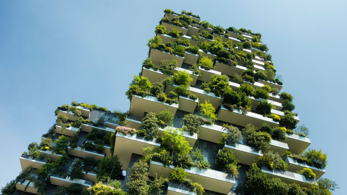 A building covered in green plants