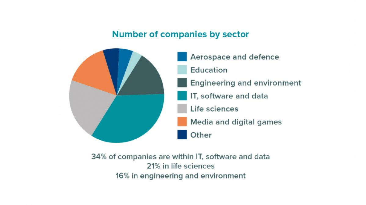 Number of companies by sector