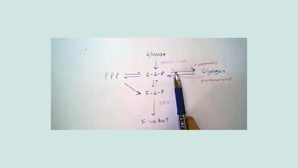 Chemical process diagram