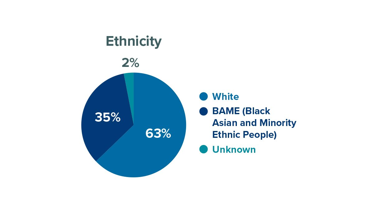 Researcher ethnicity at University of Surrey